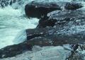 NRCSOR00077 - Oregon (5843)(NRCS Photo Gallery).tif