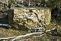NSG Steinbruch Holzmühle (88).jpg