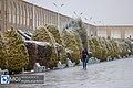 Naqsh-e Jahan Square in Winter 2020-01-14.jpg