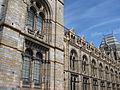Natural History Museum, London (2014) - 7.JPG