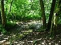 Naturdenkmal Hasequelle Wellingholzhausen Melle -Im Hase Wald- Datei 1.jpg