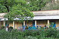 Nature Study - Summer Camp - Nisana Foundation - Sibpur BE College Model High School - Howrah 2013-06-08 9520.JPG