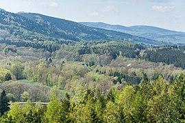 Naturpark Thüringer Wald.Blick vom Reinhardsberg.08.ajb.jpg
