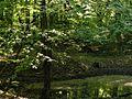 Naturschutzgebiet Braken.jpg