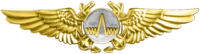 Naval Aviation Observer (Radar) Insignia.png