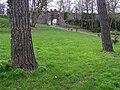 Near Castle Garden, Lisburn - geograph.org.uk - 1227040.jpg