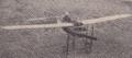 NederlandsVliegtuig.png
