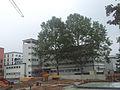 Neues-frankfurt haus-der-jugend 01.jpg