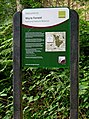New Wyre Forest Information Board by Natural England - geograph.org.uk - 1372163.jpg