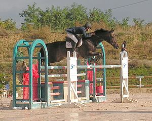 Jumping position - The jumping seat, with the knees, shoulders, and head in front of the perpendicular line made by the stirrup leather, and the hips behind it, keeping the rider balanced over a horse's center of gravity and off the back.