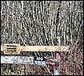 No Trespassing (140355105).jpg