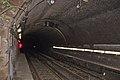 North tunnel from Platform 2 Green lane.jpg