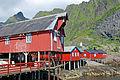 Nusfjord 2013 06 12 4203.jpg