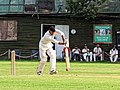 Nuthurst CC v. The Royal Challengers CC at Mannings Heath, West Sussex, England 24.jpg