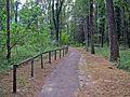 Oasi Naturale del Bosco Tenso di Premosello Chiovenda (Vb) 3.jpg