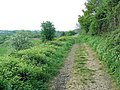 Old Midland Railway line to Evesham - geograph.org.uk - 408535.jpg