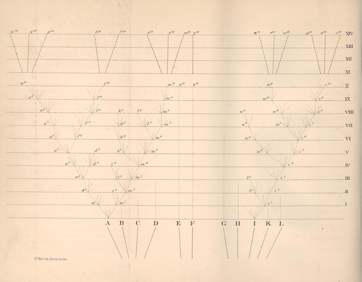 On the Origin of Species diagram.PNG