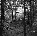 Ondergronds hol voor onderduikers, waar de lijken op 10 april 1945 werden aanget, Bestanddeelnr 900-3001.jpg