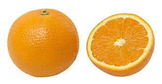 Orange (fruit) - An orange, whole and split