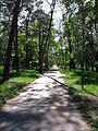 Ostroleka-park2.jpg