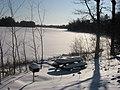 Otter Lake - Elcho, Wisconsin in winter.jpg