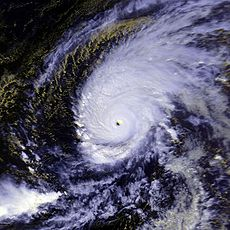 Satellite Image of Typhoon Paka