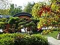 Paradisio jardin chinois2.JPG