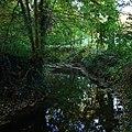 Parc du Morbras, Sucy-en-Brie - Morbras River.jpg