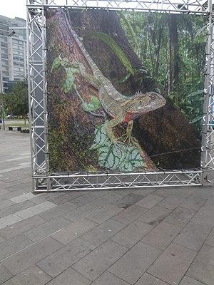 Parque La Carolina - Image: Parque La Carolina, Quito pic a 1a