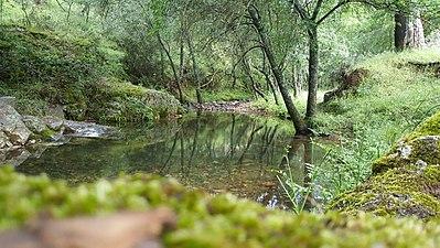 Parque natural Despeñaperros.jpg