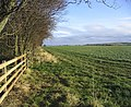 Pasture field - geograph.org.uk - 322629.jpg