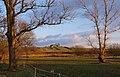 Pasture land at Bare - geograph.org.uk - 1719152.jpg