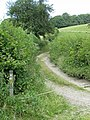 Path to nowhere - geograph.org.uk - 867421.jpg