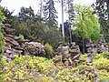 Paxton's Rock Garden - geograph.org.uk - 1317012.jpg
