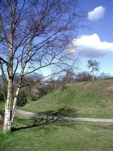 Peel Hill Castle, Thorne - geograph.org.uk - 740974