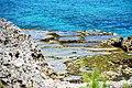 Peleliu spot - panoramio.jpg
