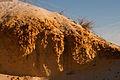Perth basin soil profile gnangarra-20.jpg