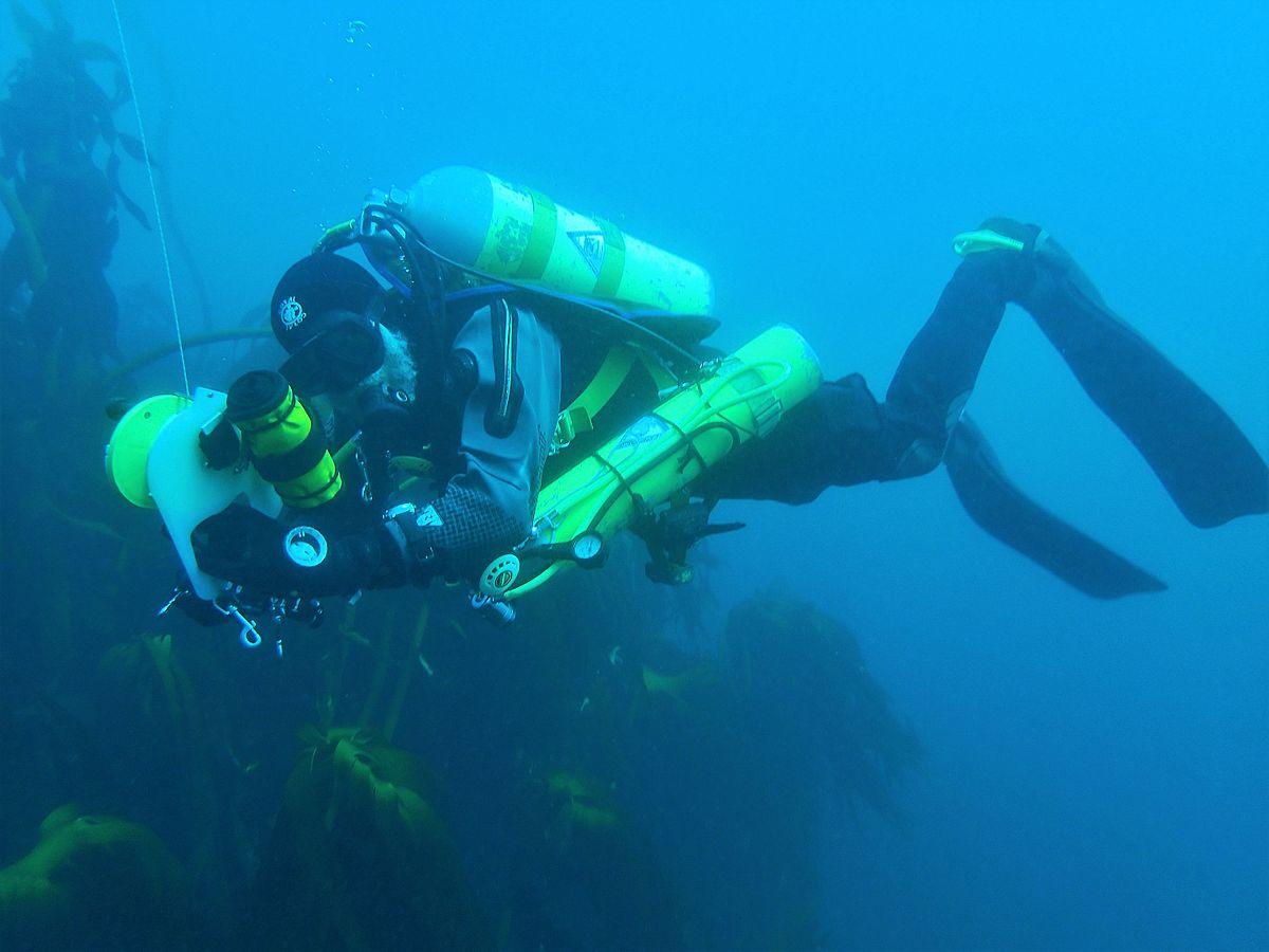 Gas Toxicity of Scuba Diving