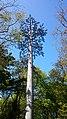 Phone mast (17769460822).jpg
