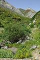Piedrafita de la Mediana 08 by-dpc.jpg