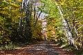Piercefield, NY, USA - panoramio (53).jpg