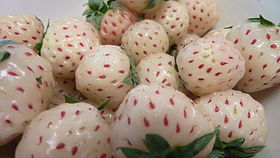 Pineberries.jpg