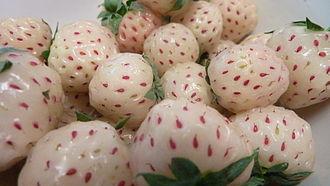 Pineberry - Image: Pineberries