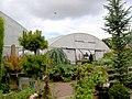 Plants of Special Interest (PSI) garden centre. - geograph.org.uk - 527154.jpg