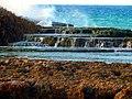 Playa La Sardinera - Hatillo, Puerto Rico - panoramio.jpg