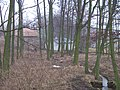 Podstěžovský mlýn, od hráze (01).jpg