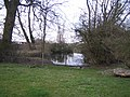 Pond near Doddershall House - geograph.org.uk - 389755.jpg