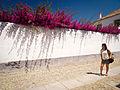 Portugal no mês de Julho de Dois Mil e Catorze P7210361 (14568658879).jpg