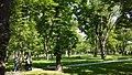 Prater Park.jpg