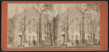 Presby'n (Presbyterian) Church, Lafayette St, from Robert N. Dennis collection of stereoscopic views.png